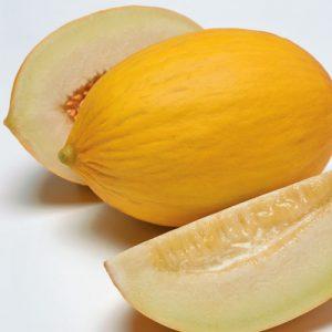 Melon-F1-DURASOL