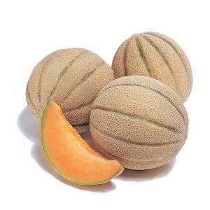 Melon-F1-FANTASISTA