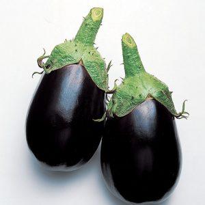 Eggplant-BLACK-KING