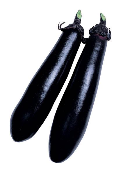 Eggplant-BLACK-SHINE