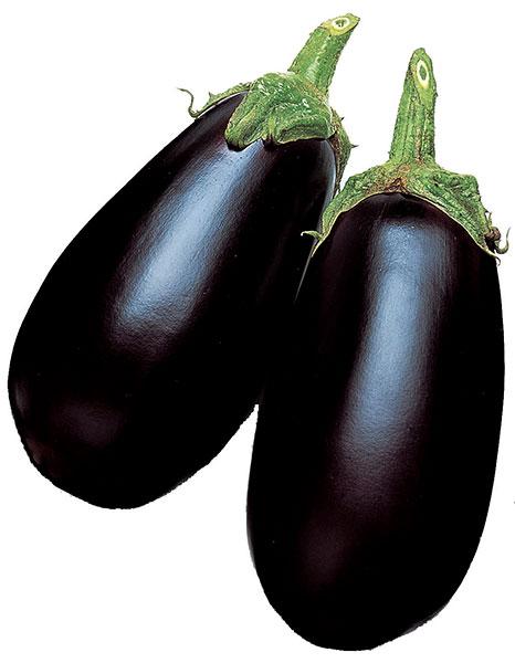 Eggplant-Black-Enorma