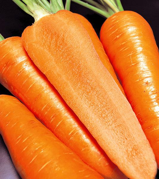 Carrot-Fire-Wedge-Cut