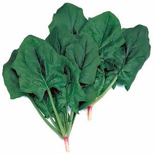 Spinach-ALRITE