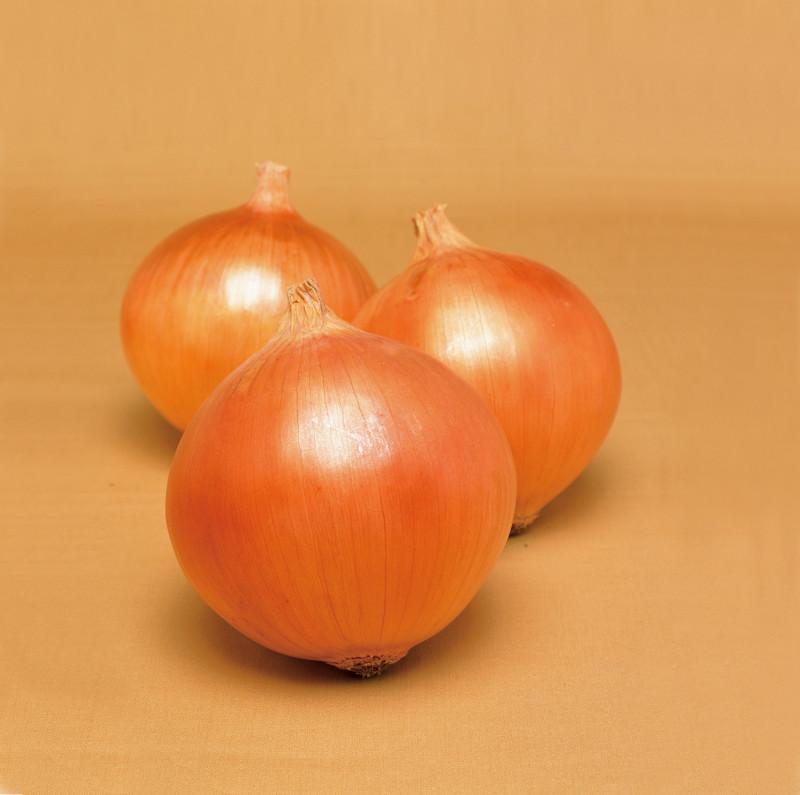 Onion KEEPSAKE